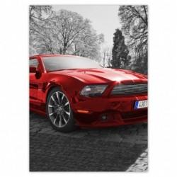 Plakat 50x70cm Czerwony...