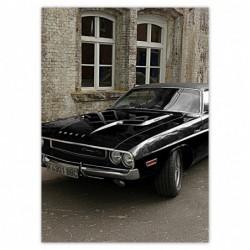 Plakat 50x70cm Dodge...