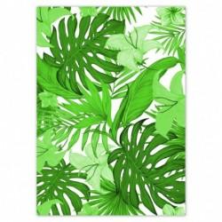 Plakat 50x70cm Leaves...