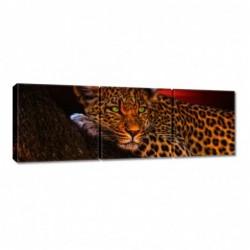 Obraz 90x30cm Lampart pantera