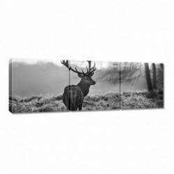 Obraz 90x30cm Czarno-biały...