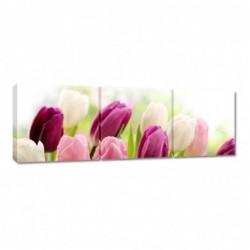 Obraz 90x30cm Piękne tulipany
