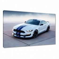 Obraz 60x40cm Ford Mustang...