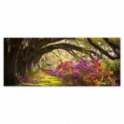 Fototapeta 250x104cm Kwiaty...