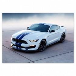 Fototapeta 312x219cm Ford...