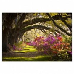 Fototapeta 312x219cm Kwiaty...
