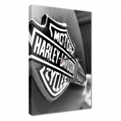 Zegar 40x60cm Logo Harley...